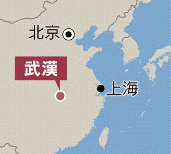 武漢からのコロナウイルス その概要と現在の状況、この先はどうなるか…